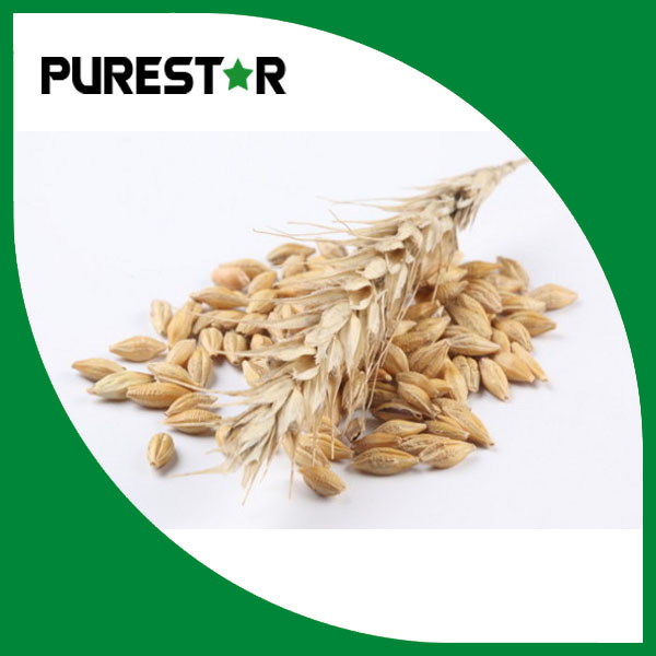 Oat Beta Glucan powder 45%