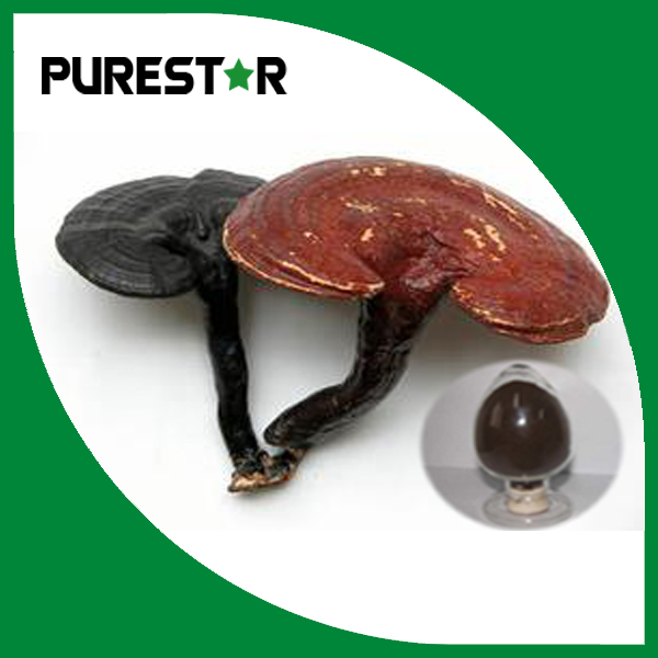 Ganoderma lucidum extract 30% Beta Glucan